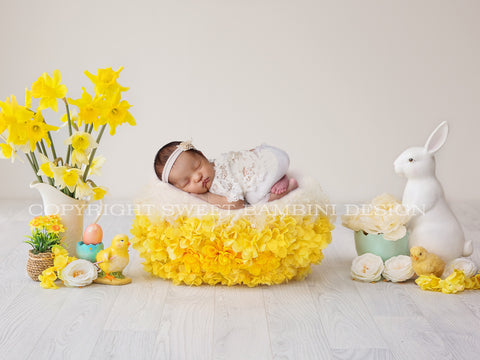 Newborn Digital Backdrop - Easter Nest