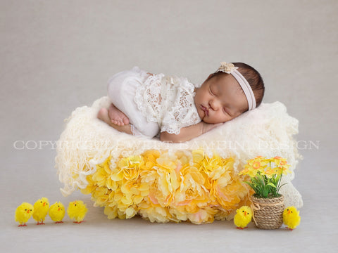 2020 Easter Special ****GORGEOUS EASTER NEST****