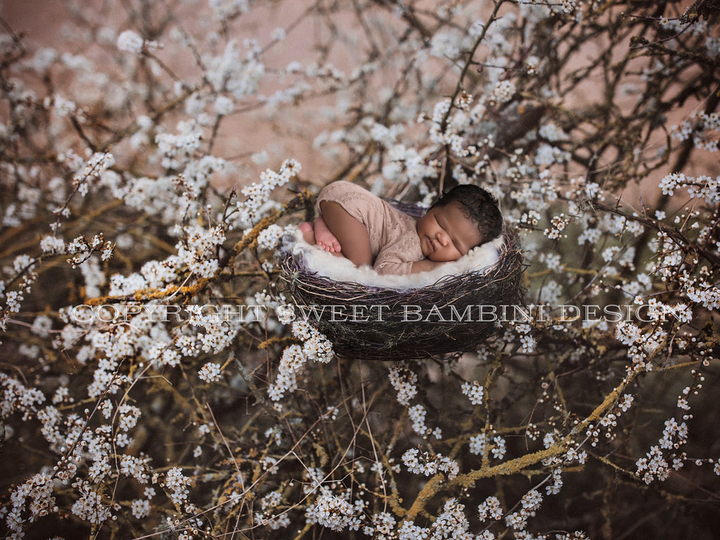 Digital Backdrop for newborns - Natural nest amongst flowering blackthorn bush