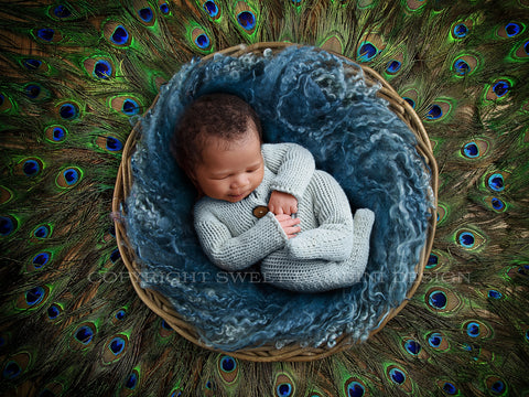 Newborn Digital Backdrop - Blue nest with peacock feathers - Instant Download