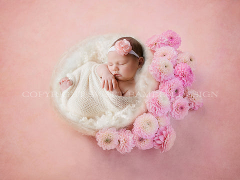 Newborn Digital Backdrop -Side/Back Lit Dahlia nest- Instant Download