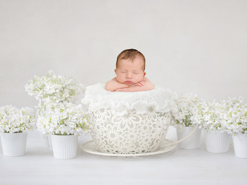 Newborn Digital Backdrop -Giant White Teacup - Instant Download