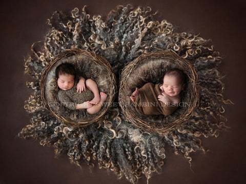 Newborn Digital Backdrop - Twin Wicker Nest- Instant Download