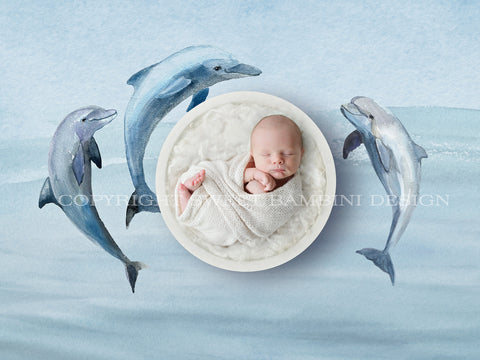Newborn Digital Backdrop - White bowl and Dolphins - Instant Download - Watercolour digital