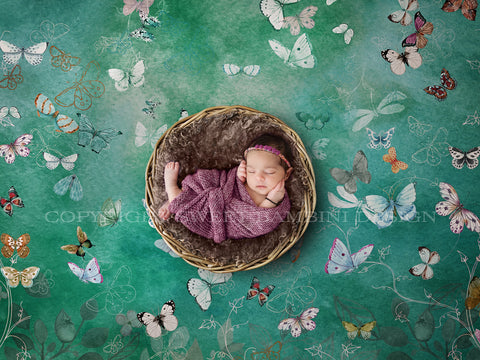 Newborn Digital Backdrop - Wicker Bowl and Butterflies - Instant Download - Watercolour digital