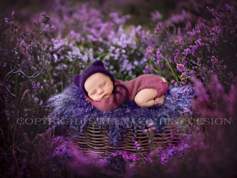 British New Forest purple heather - Newborn Digital Backdrop