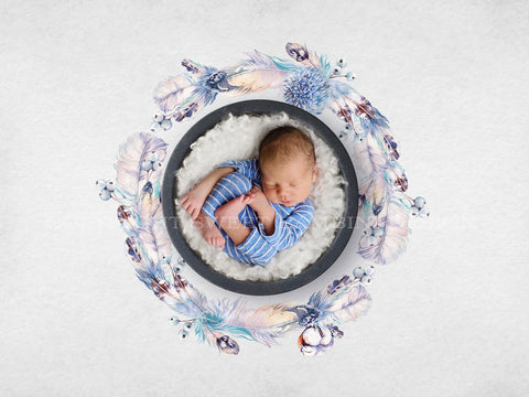 Newborn Digital Backdrop - Unisex Winter Watercolour Nest with Feathers