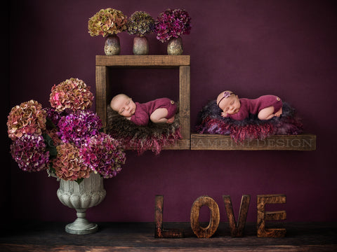 Twin Newborn Digital Backdrop - Rustic Wooden Shelf- Shades of Berry- Fresh hydrangea