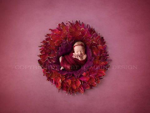 Newborn Digital Backdrop - Shades of Red and Mulberry - Feather Nest