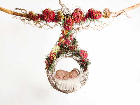 Newborn Digital Backdrop - Hanging fresh floral swing/wreath