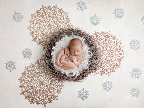 Newborn Digital Backdrop - Natural Nest with Silver and Gold Snowflakes