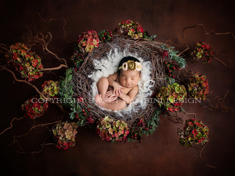 Christmas Newborn Digital Backdrop - Natural Nest with fresh hydrangeas and berries