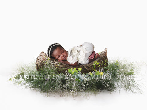 Organic Newborn Digital Backdrop - Backlight Tree Piece with green foliage