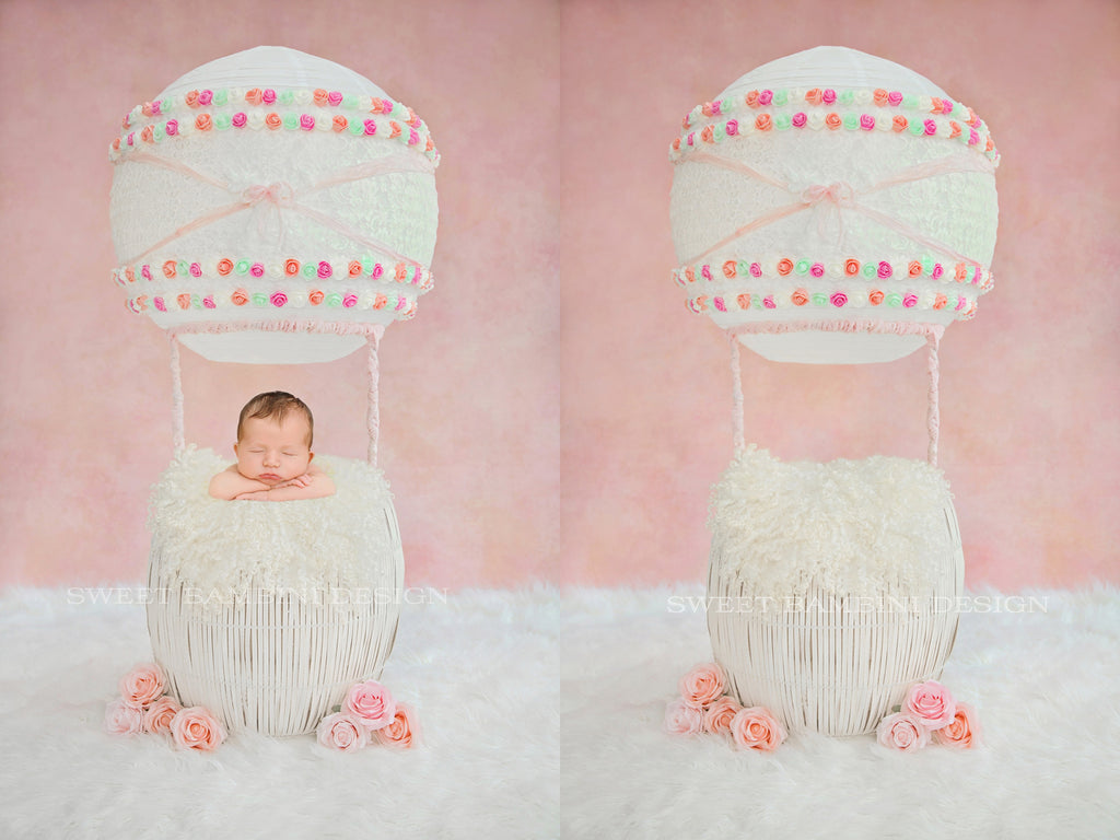 Newborn Digital backdrop Hot Air Balloon - Sophie