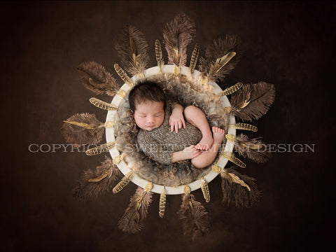 Unique Newborn Digital Background for girls or boys - Feather nest on rich brown background