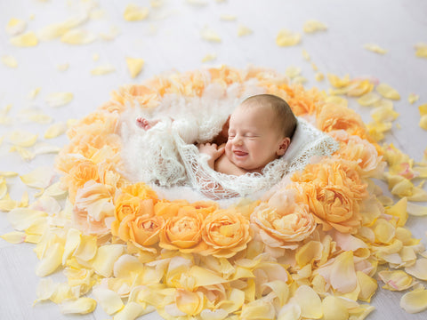 Newborn Photography Digital Backdrop for girls - Beautiful Yellow Rose nest, shot side on