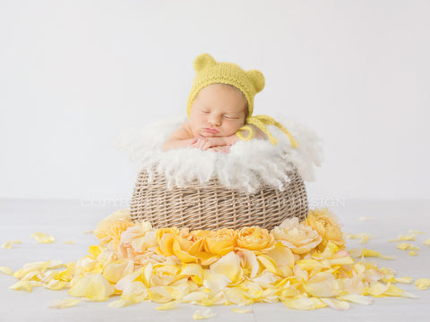 Newborn Photography Digital Backdrop for girls - Simple wicker basket surrounded by yellow rose petals