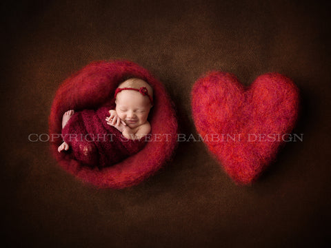 Newborn Digital Backdrop - Red felted nest and red felted heart