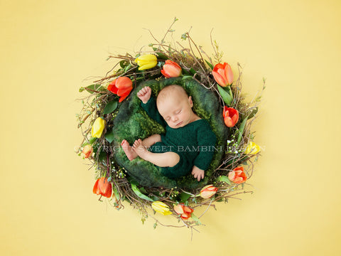 Newborn Digital Backdrop -  Fresh Tulip Nest- Instant Download