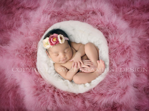 Newborn Photography Feather Nest Digital Backdrop