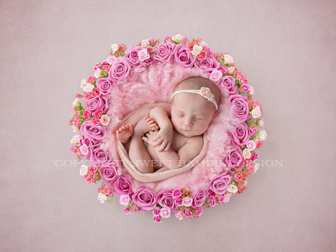 Digital Background newborn photography - Hot Pink Rose Nest Instant Download