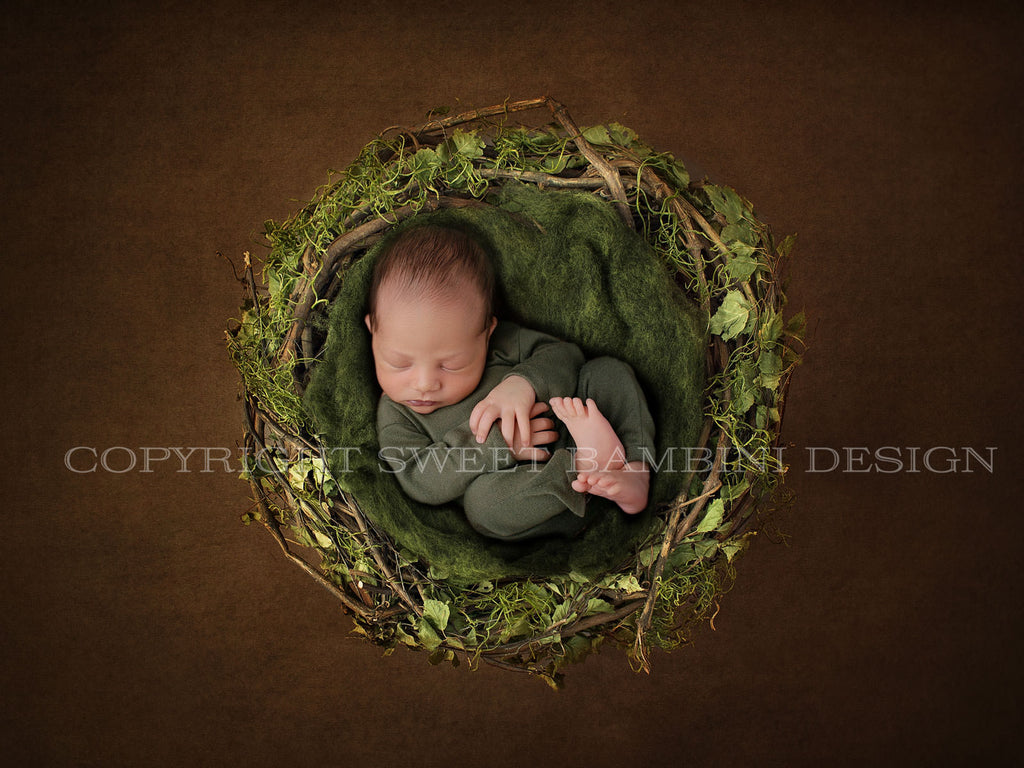 Newborn Digital Backdrop-  Natural Leaf and Moss Nest - Instant Download Ready For You to Edit