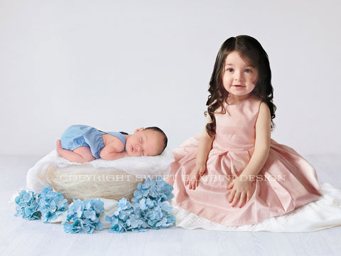 Digital Backdrop for Newborn with brother or sister - Blue flower nest/Sitter backdrop/Newborn digital backdrop