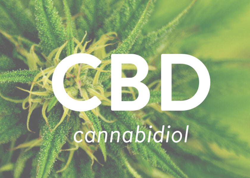 The Rise Of CBD - All Questions Answered