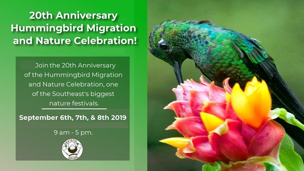 20th Anniversary Hummingbird Migration and Nature Celebration