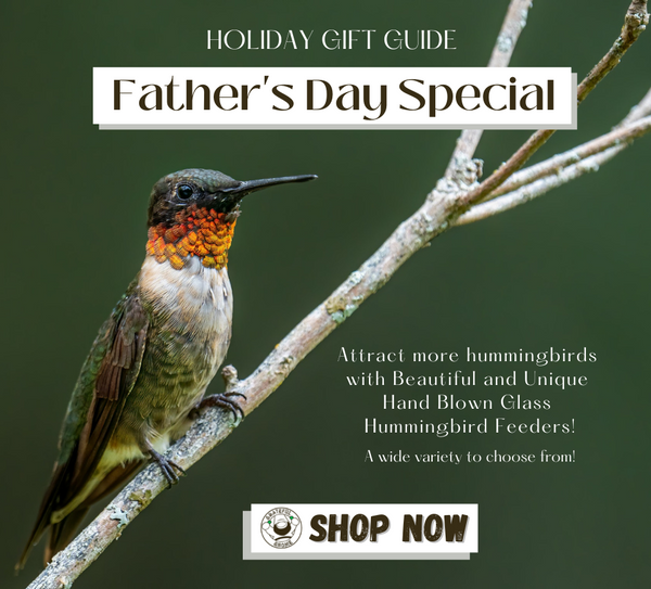 fathers-day-special-holiday-gift-ideas