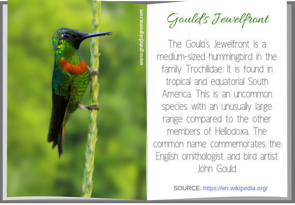 Gould's Jewelfront