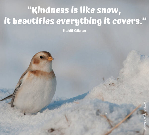 Inspirational Positive Quotes - Winter Quotes