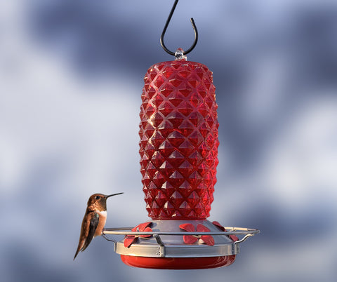 Making Your Own Hummingbird Nectar