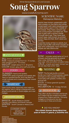 Song Sparrow Infographic