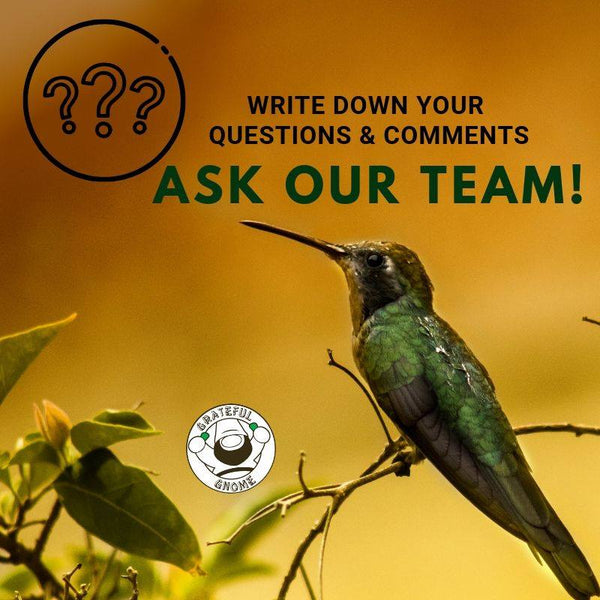 ask our team