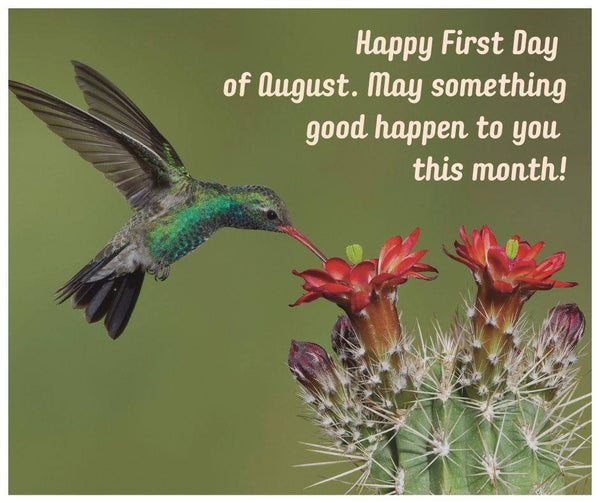 happy-first-day-of-august