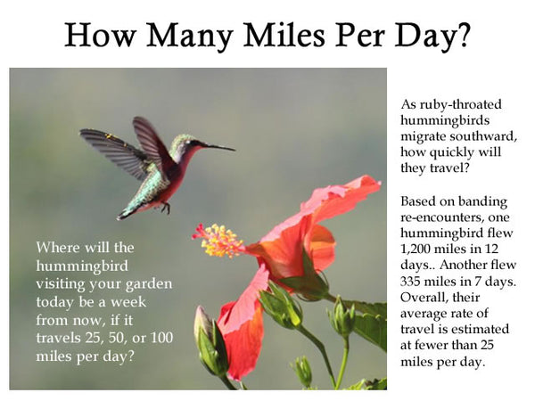 How Many Miles Per Day