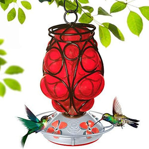 Moroccan Lantern Hummingbird Feeder - Hand Blown Glass - 28 Fluid Ounces Hummingbird Feeders Grateful Gnome