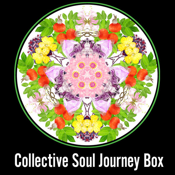 Collective Soul Journey Box