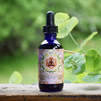 The Mystic - Herbal Elixir 60ml
