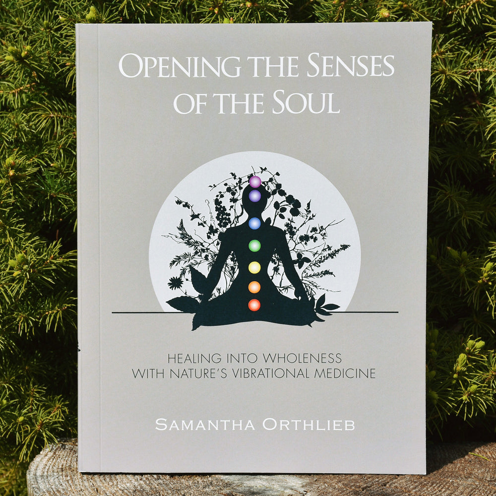 Opening The Senses of the Soul Book