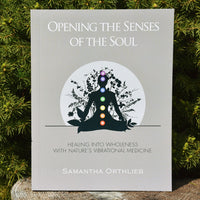 Opening the Senses of the Soul (ePub)