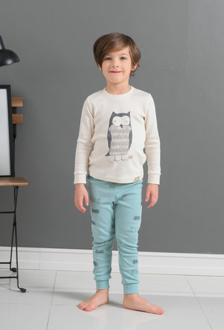 Sleepy Owl Boys Organic Pajamas