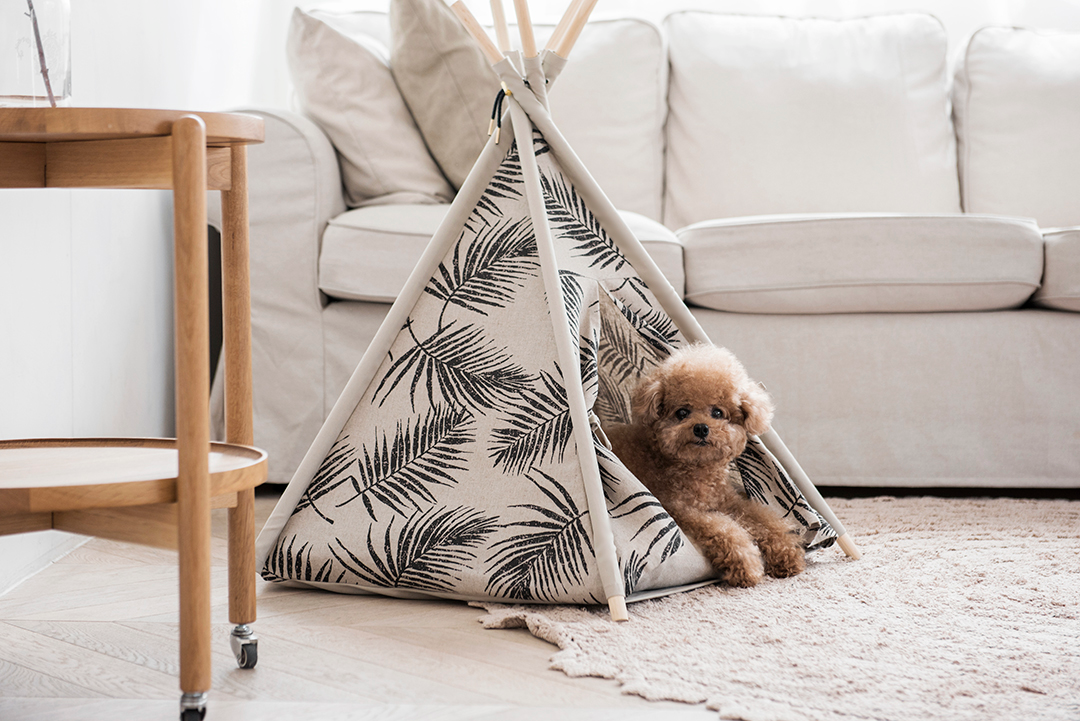 Huts & Bay Natural Leaf Pet Teepee Tent | Smack Bang Blog