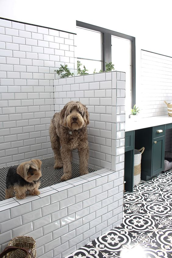The House of Silver Lining | The Laundry/Dog Room