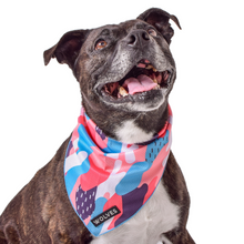 Wolves of Wellington Floss Mesh Dog Bandana | Smack Bang