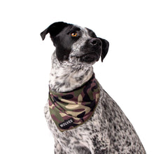 Wolves of Wellington Camo Mesh Bandana | Smack Bang