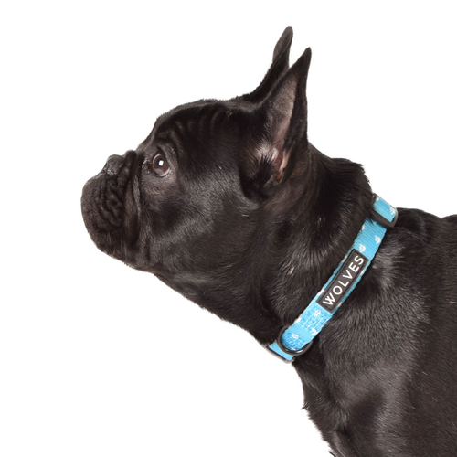Wolves of Wellington Shaka Dog Collar | Smack Bang