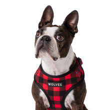 Wolves of Wellington Buffalo Mesh Dog Harness | Smack Bang