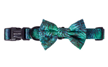 Wolves of Wellington Florida Pet Bow Tie and Dog Collar | Smack Bang